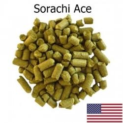 Lúpulo Sorachi Ace T - 90 de 20 gramos
